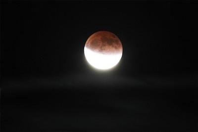 10.12.2011 19:32 (8 кадров)